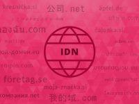 IDN domene